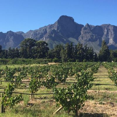 Fyndraai at Solms Delta