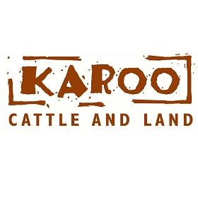 Karoo Cattle and Land (Carlswald)