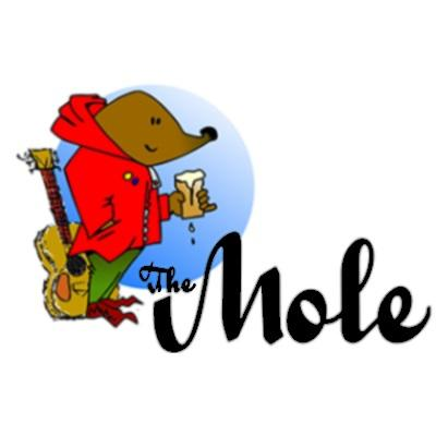 The Crafty Mole Pub