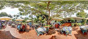 Blue zoo restaurant
